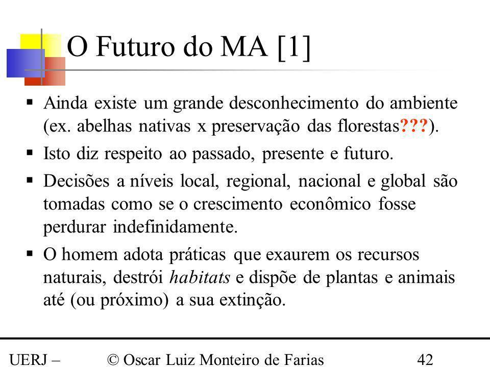 O Futuro do MA [1] Ainda existe um grande desconhecimento do ambiente (ex. abelhas nativas x preservação das florestas ).